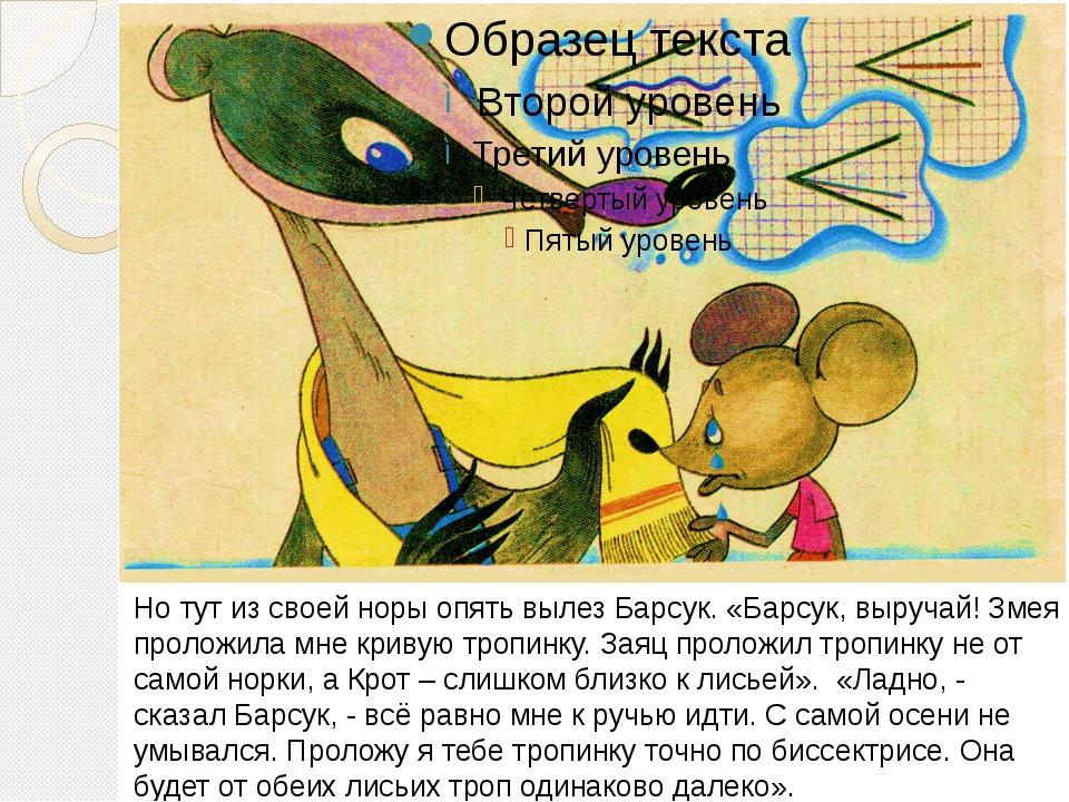 Но тут из своей норы опять вылез Барсук. «Барсук, выручай! Змея проложила мн...