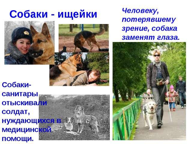 Собаки - ищейки Человеку, потерявшему зрение, собака заменят глаза. Собаки-са...