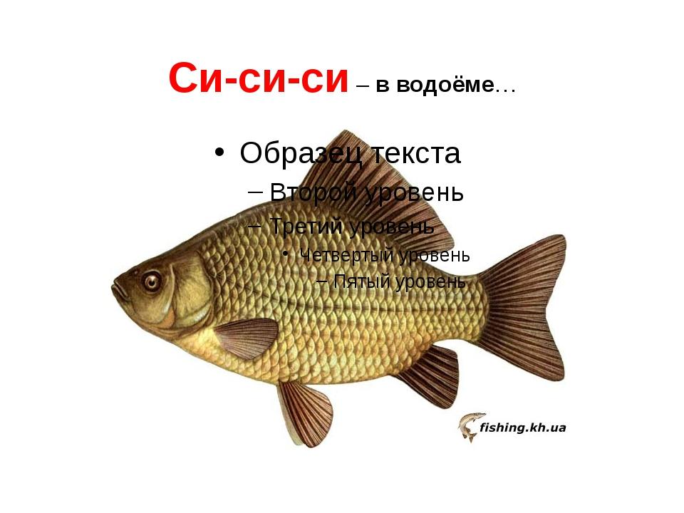 Си-си-си – в водоёме…