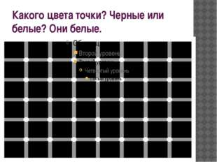 Какого цвета точки? Черные или белые? Они белые.