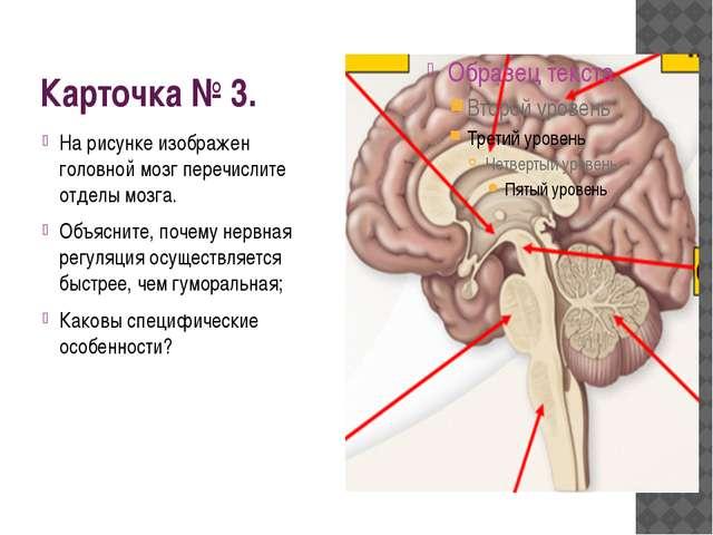 Карточка № 3. На рисунке изображен головной мозг перечислите отделы мозга. Об...