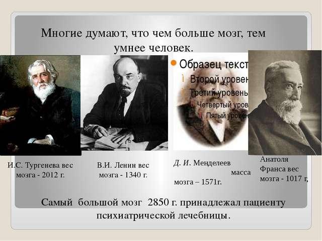 И.С. Тургенева вес мозга - 2012 г. В.И. Ленин вес мозга - 1340 г. Многие дума...