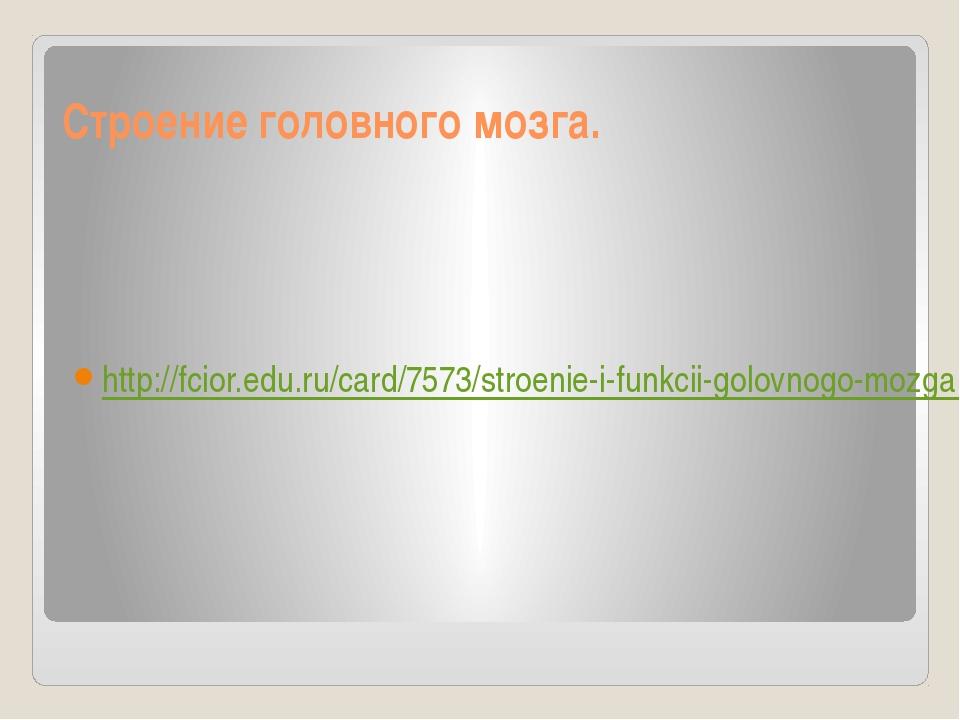 Строение головного мозга. http://fcior.edu.ru/card/7573/stroenie-i-funkcii-go...