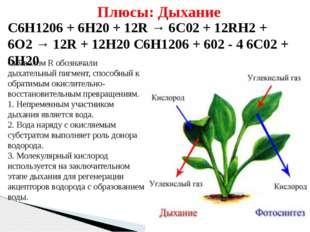С6Н1206+ 6Н20 + 12R → 6С02+ 12RH2+ 6O2→ 12R + 12Н20 С6Н1206+ 602- 4 6С0