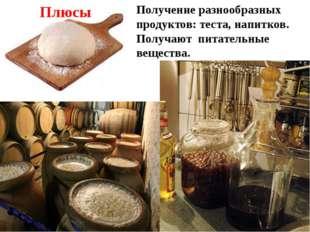 Получение разнообразных продуктов: теста, напитков. Получают питательные веще