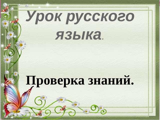 Урок русского языка. Проверка знаний.