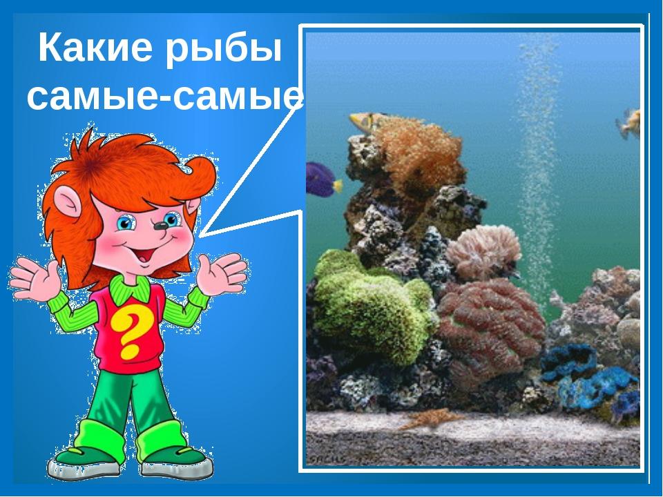Какие рыбы самые-самые