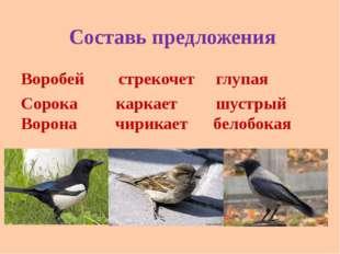 Составь предложения Воробей стрекочет глупая Сорока каркает шустрый Ворона чи