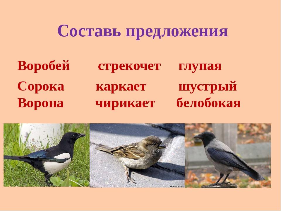 Составь предложения Воробей стрекочет глупая Сорока каркает шустрый Ворона чи...