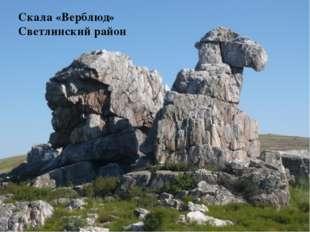 Скала «Верблюд» Светлинский район