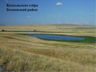 Коскольские озёра Беляевский район