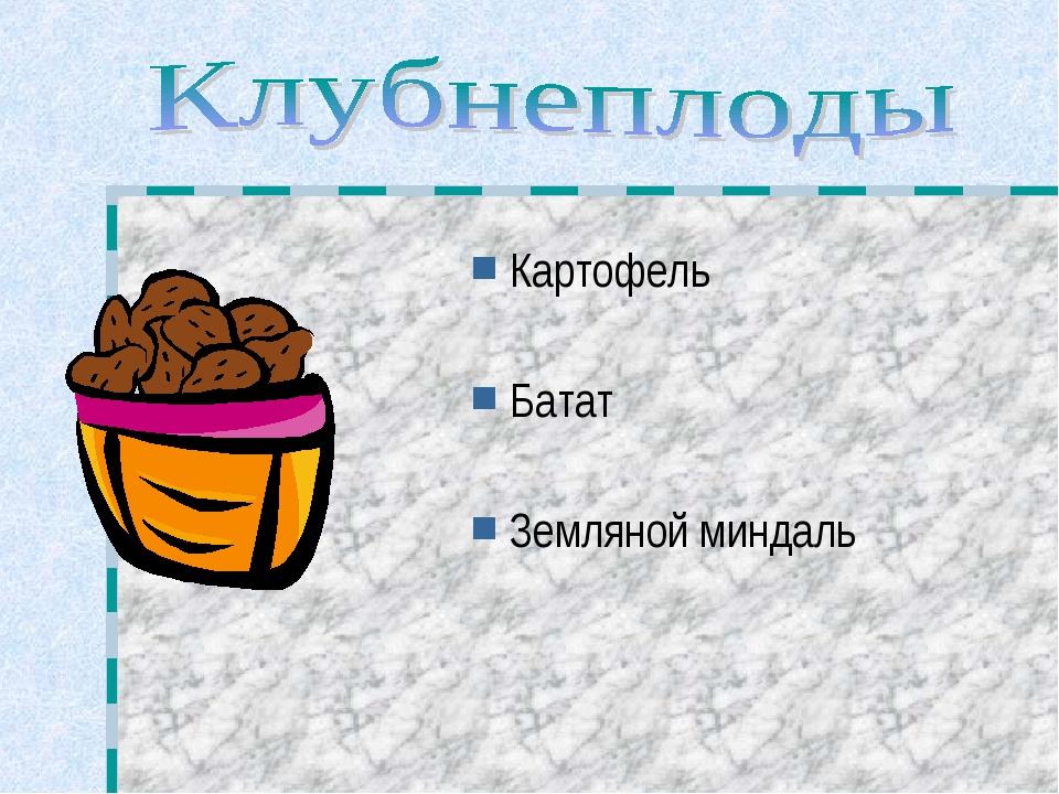 Картофель Батат Земляной миндаль