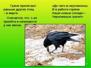 Грачи прилетают раньше других птиц – в марте. Считается, что с их прилёта и