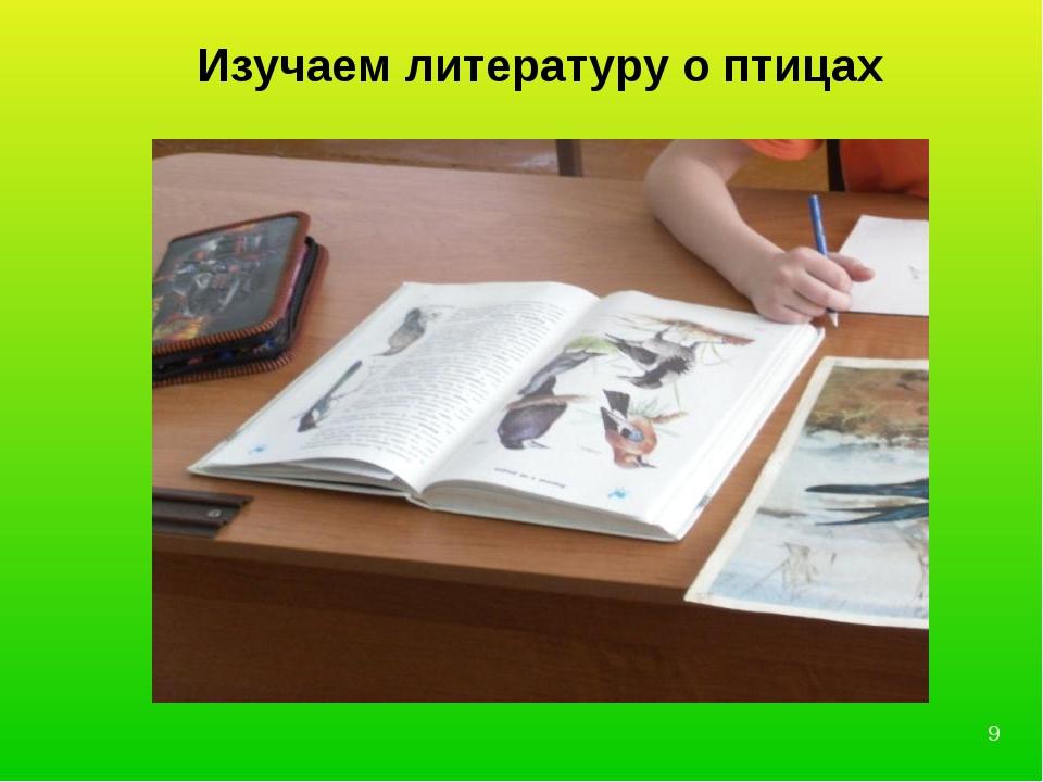 Изучаем литературу о птицах *