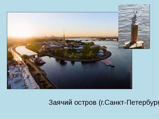 Заячий остров (г.Санкт-Петербург)