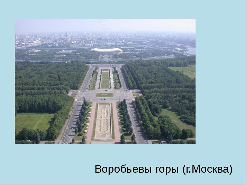 Воробьевы горы (г.Москва)