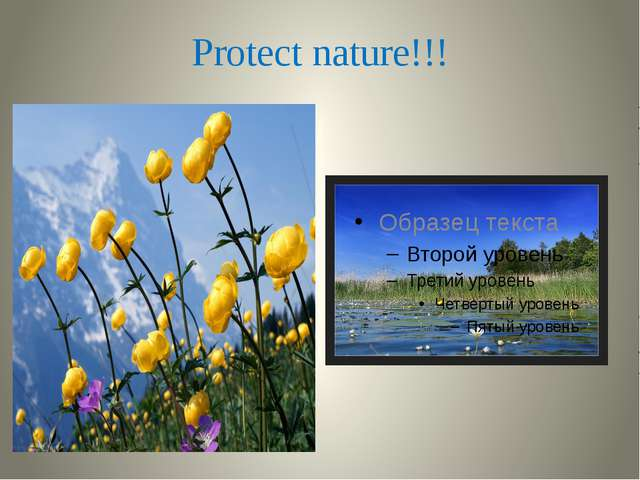 Protect nature!!!
