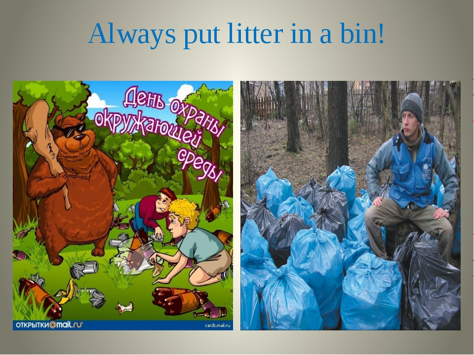 Always put litter in a bin!