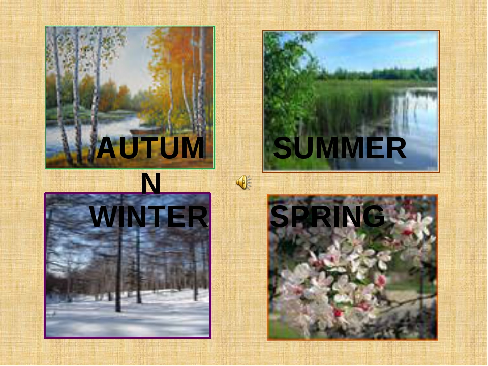 AUTUMN SPRING SUMMER WINTER