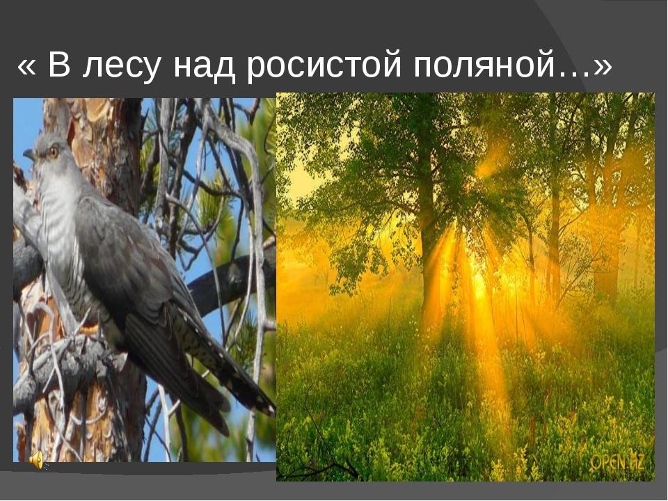 « В лесу над росистой поляной…»