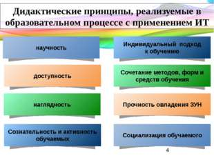 Дидактические принципы, реализуемые в образовательном процессе с применением
