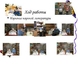 Ход работы Изучение научной литературы