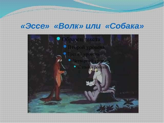 «Эссе» «Волк» или «Собака»