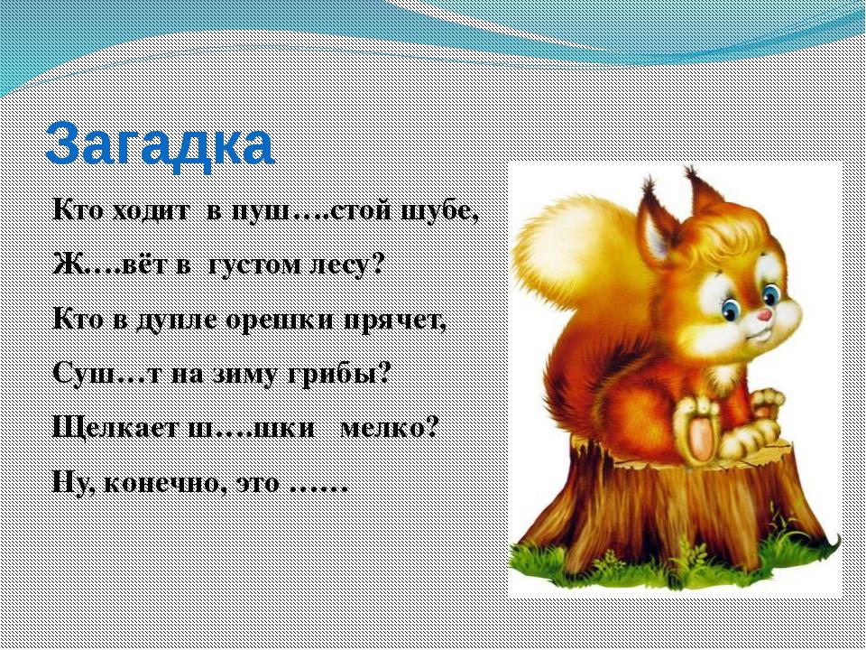 Загадка Кто ходит в пуш….стой шубе, Ж….вёт в густом лесу? Кто в дупле орешки...