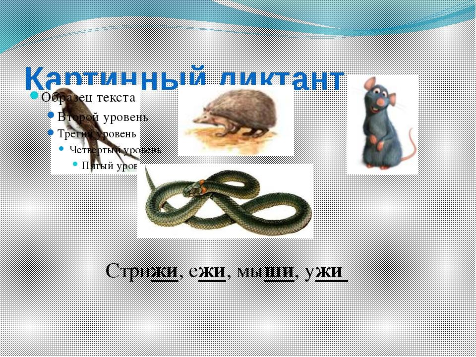 Картинный диктант Стрижи, ежи, мыши, ужи