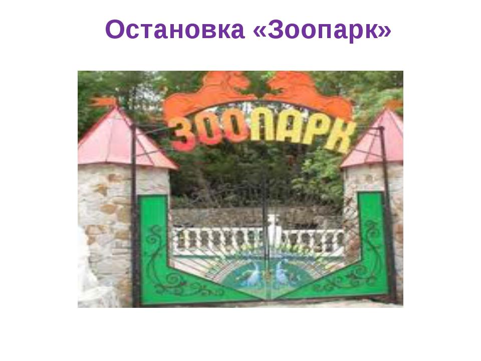 Остановка «Зоопарк»