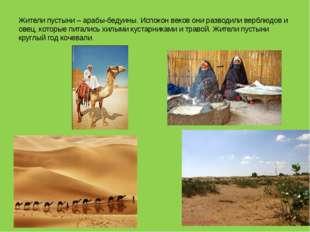 Жители пустыни – арабы-бедуины. Испокон веков они разводили верблюдов и овец,
