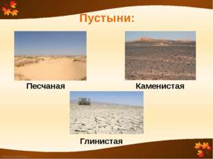 Пустыни: Каменистая Песчаная Глинистая FokinaLida.75@mail.ru