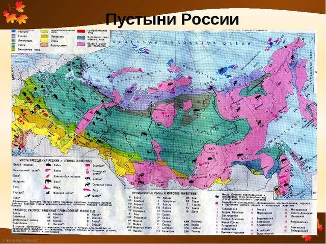 Пустыни России FokinaLida.75@mail.ru