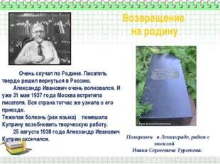 Очень скучал по Родине. Писатель твердо решил вернуться в Россию. Александр