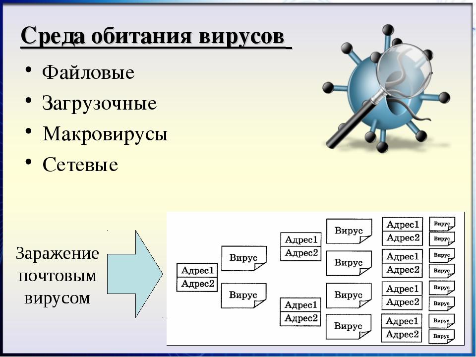 Файловые Загрузочные Макровирусы Сетевые Среда обитания вирусов Заражение поч...