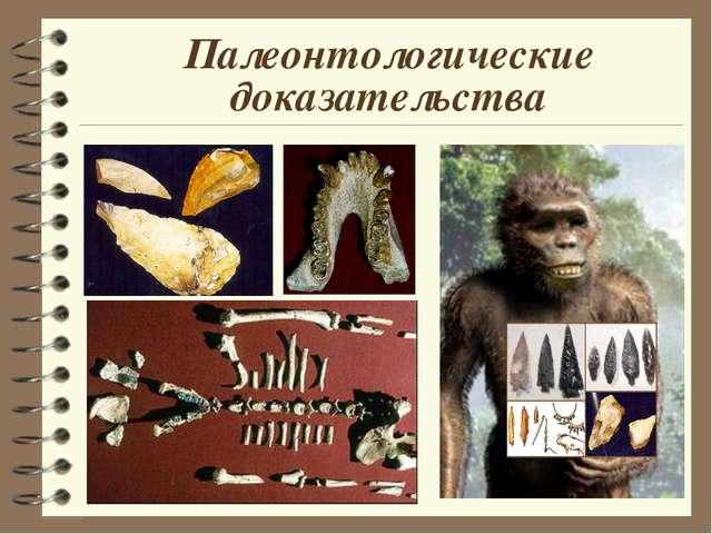 Палеонтологические доказательства
