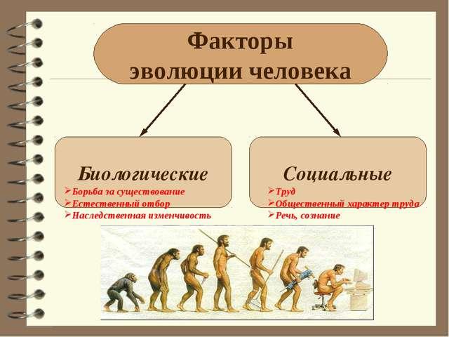 Факторы эволюции человека Биологические Социальные Борьба за существование Ес...