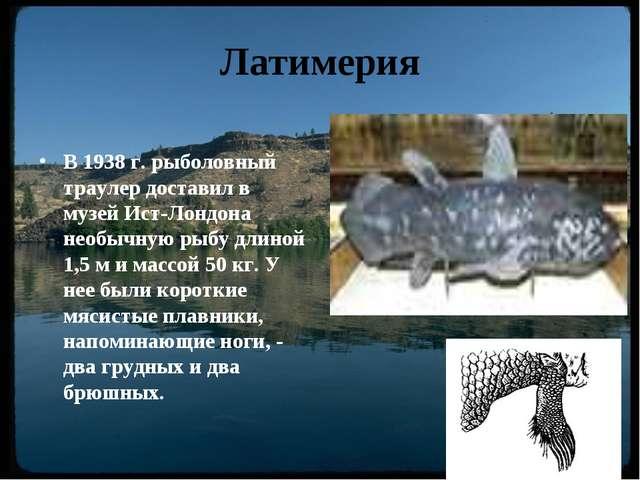 Решебник по литературе 11 класс журавлев