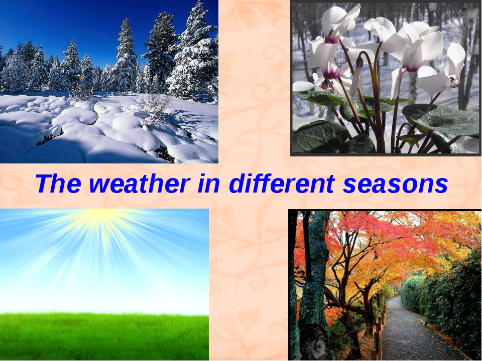 The weather in different seasons