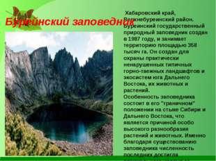 Хабаровский край, Верхнебуреинский район. Буреинский государственный природн