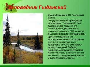 Заповедник Гыданский Ямало-Ненецкий АО, Тазовский район. Государственный при