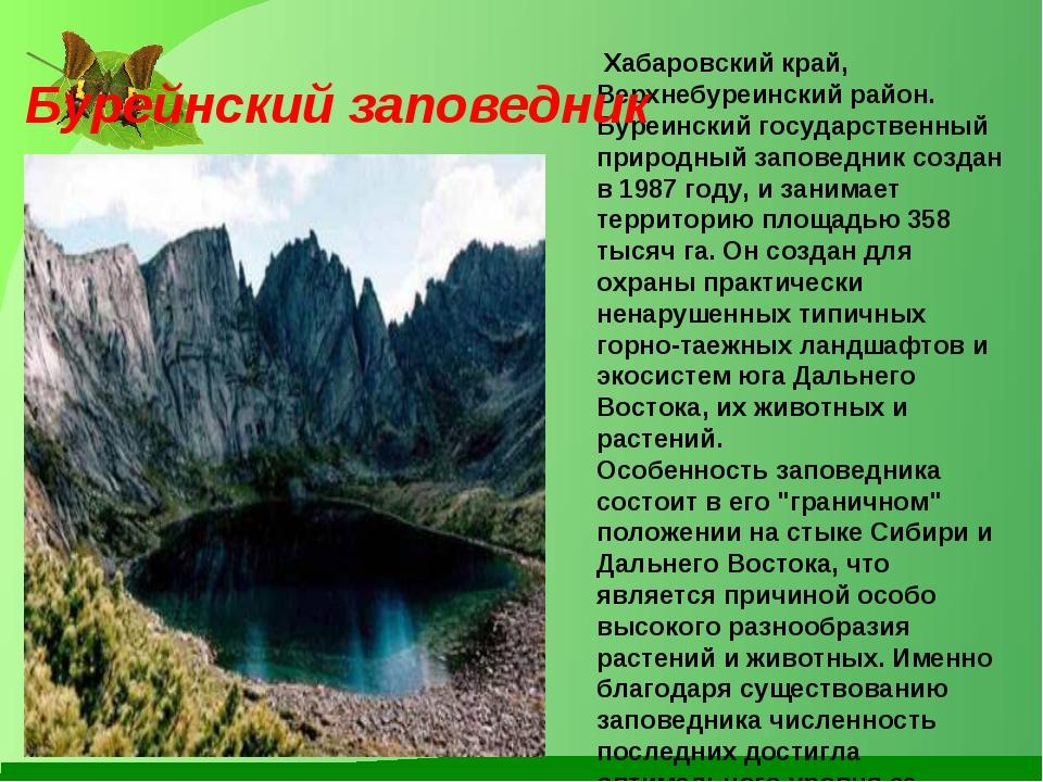 Хабаровский край, Верхнебуреинский район. Буреинский государственный природн...