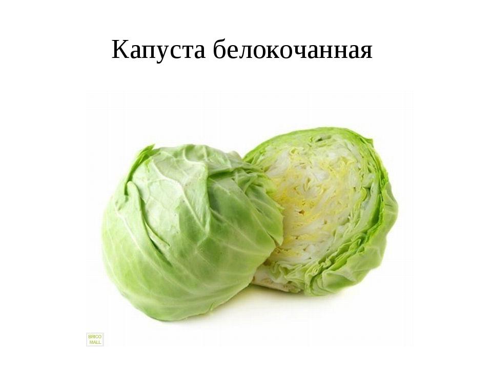 Как капусту сделать мягкой для салата