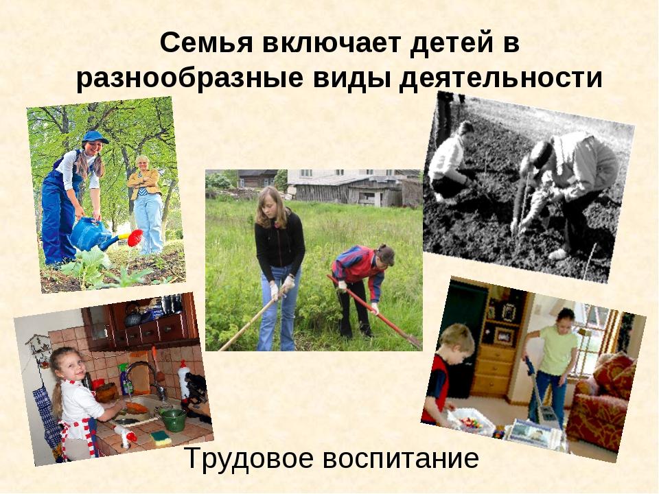 Семья включает детей в разнообразные виды деятельности Трудовое воспитание