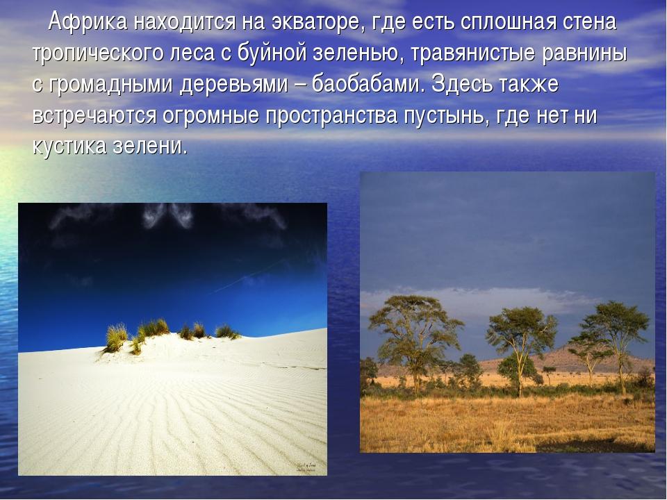 Африка находится на экваторе, где есть сплошная стена тропического леса с бу...