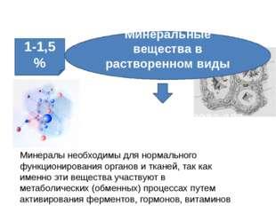 Неорганические вещества клетки Необходимая среда для химических процессов Мин