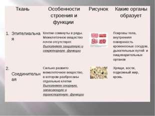 Ткань Особенностистроения и функции Рисунок Какие органы образует Эпителиаль