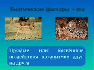 Прямые или косвенные воздействия организмов друг на друга