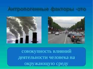 совокупность влияний деятельности человека на окружающую среду