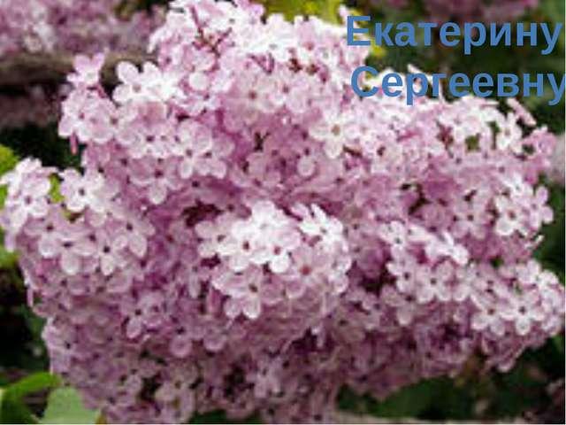 Екатерину Сергеевну
